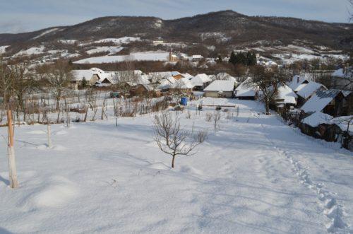 záhrada pod snehom